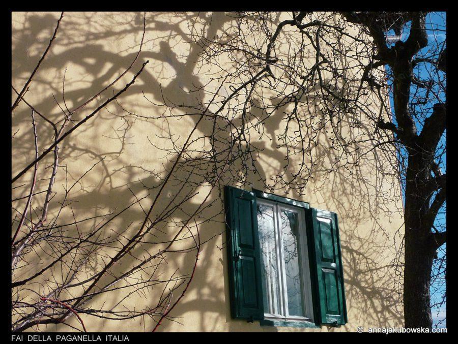 anna-jakubowska_twarze-domow_03-024