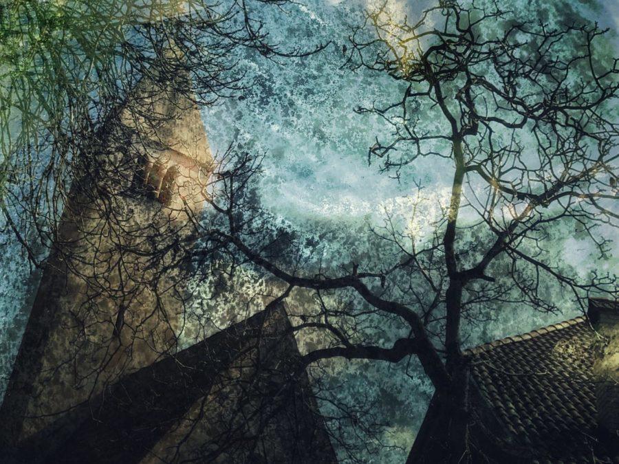 maria-laskowska-wystawa_04_a-www